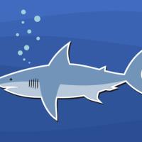 Die Hai-Familie